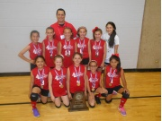 T.A.A.F. 2015 Girls 10 & Under State Volleyball Runner-up